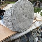 Baumstamm-Stegträger