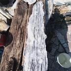 Silikonabformung altes Holz