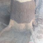 Baumstumpf und Fake rocks eingefärbt